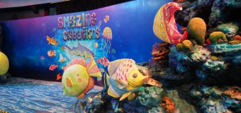 みんな大好き水族館☆SEA LIFE Bangkok Ocean World!(旧:SIAM OCEAN WORLD)