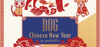 『Pet Plern EP.5 Dog Chinese New Year 』@SUANPLERN MARKET RAMA4